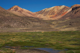 Wetland in the Atacama Photographic Print by  JeremyRichards