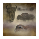 Buffalo Dreams Giclee Print by Jai Johnson