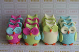 Owls Multi Color Brights Large Set Photographic Print