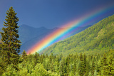 Rainbow over Forest Photographic Print by Dmitry Pichugin