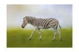 Journey of the Zebra Giclee Print by Jai Johnson
