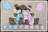 Bear Boy Girl Gender Reveal Photographic Print