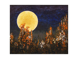 Moonlit Landscape with Flowers Print by  clivewa