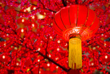 Chinese Lanterns Photographic Print by wong yu liang
