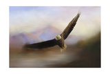 Eagle at the Mountain Giclee Print by Jai Johnson