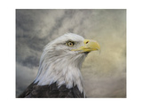 Master of the Skies Giclée-Druck von Jai Johnson