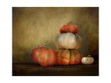 Pumpkins Still Life Giclée-Druck von Jai Johnson