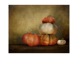 Pumpkins Still Life Giclee Print by Jai Johnson