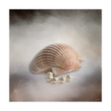 Sea Shell and Pearls Giclee Print by Jai Johnson