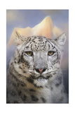 Snow Leopard at the Mountain Giclee Print by Jai Johnson