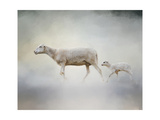 In My Mothers Footsteps Sheep and Lamb Giclee Print by Jai Johnson