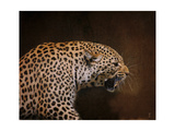 Snarling Leopard Giclee Print by Jai Johnson