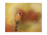 Backyard Jewel Giclee-trykk av Jai Johnson