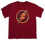 Youth: The Flash - Chest Logo Shirts