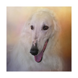 The Elegant Borzoi Giclee Print by Jai Johnson