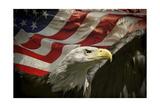 Águila americana Lámina giclée por Jai Johnson