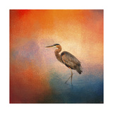 Sunset Heron Giclee Print by Jai Johnson