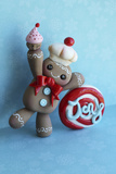 Gingerbread Man 2013 Photographic Print