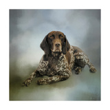 Waiting for a Cue German Shorthaired Pointer Giclee Print by Jai Johnson