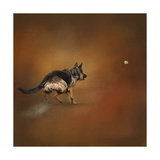 Gimme That Ball German Shepherd Giclee Print by Jai Johnson