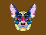 French Bulldog Head in Geometric Pattern Poster by  happysunstock