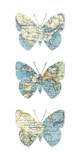Map Butterflies Giclee Print by Sasha Blake