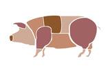 Pig Parts Poster by  foforeds