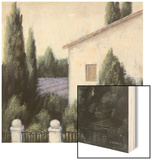 Lavender Villa Detail Wood Print by James Wiens