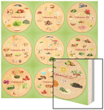 Collage Of Various Food Products Containing Vitamins Wood Print by  Yastremska
