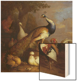 A Peacock, a Peahen and Poultry in a Landscape Wood Print by Tobias Stranover
