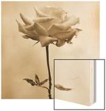 Long-Stemmed Rose Wood Sign by Tom Marks