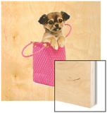 Chihuahua Puppy in Pink Purse Wood Sign by Pat Doyle