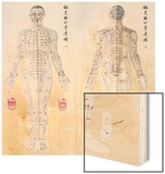 Chinese Chart of Acupuncture Points on a Male Body, 1956 Wood Print