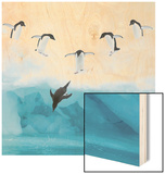 Penguins Jumping into Water Wood Print by Tim Davis
