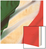 Irish flag Wood Print by Jim Barber