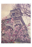 April in Paris Posters by Dawne Polis