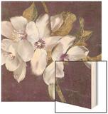 Plum Blossoms 2 Wood Print by Jurgen Gottschlag