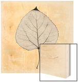 Cottonwood Leaf Wood Print by Booker Morey