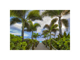 Paradise Path Giclee Print by Dennis Frates