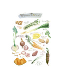 Winter Vegetables Posters by Lucile Prache