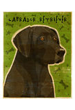 Black Lab (NEW) Posters by John W. Golden