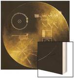 NASA's Voyager 1 and 2 Spacecraft Were Launched in the 1977 and Still Functioning, Now 14 and 11 Wood Print