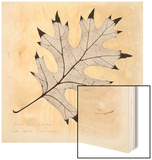 Black Oak Leaf Wood Print by Booker Morey