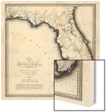 1823, Florida State Map, Florida, United States Wood Print