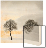 Winter Solstice Detail 1 Wood Print by Ilona Wellman