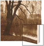 City Perspective Wood Print by Sasha Gleyzer