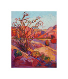 Ocotillo Shadow Giclee Print by Erin Hanson