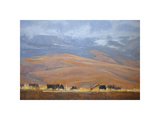 North Powder Cows Giclee Print by Todd Telander