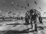 Fisher10 Photographic Print by Majid Alamri