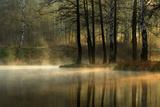 Silent Light. Photographic Print by Agnieszka Jankowska